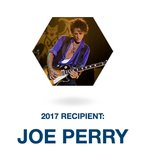 2017 joe perry les paul